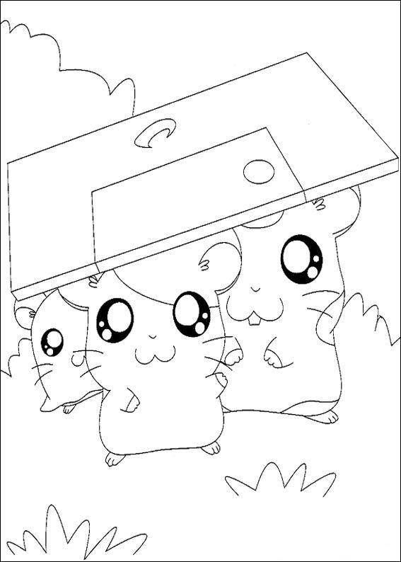 Ham-skinker (13) fargelegging