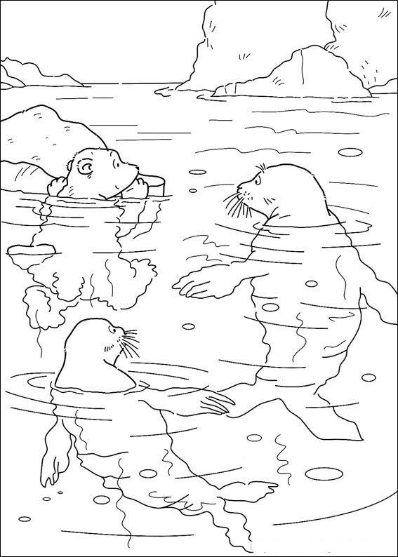 Kleurplaten Zeehond.Kleine Ijsbeer Met Zeehonden Kleurplaat Jouwkleurplaten