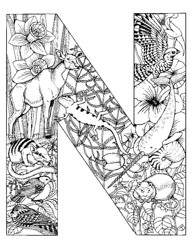 Kleurplaten Letter W.Letter N Kleurplaat Jouwkleurplaten