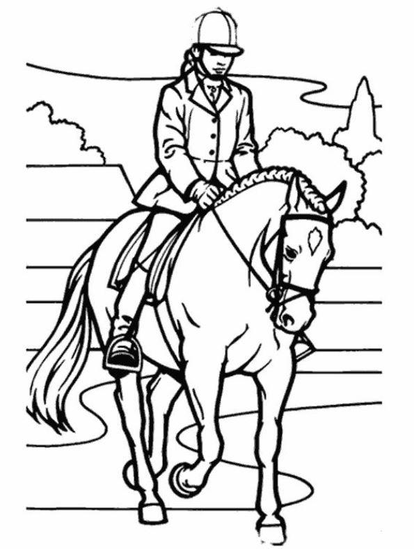 Kleurplaat Paardrijden Dressuur Paarden Kleurplaat Jouwkleurplaten