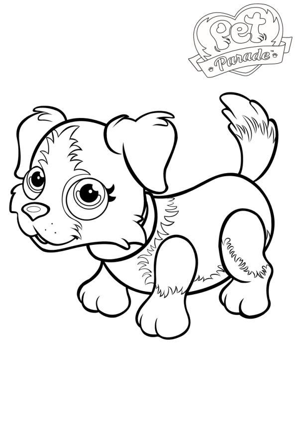 Husdjurparad målarbok