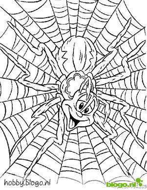 Kleurplaten Vogelspinnen.Spin Kleurplaat