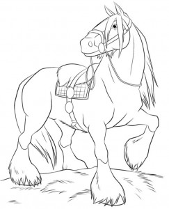 Angus coloring page