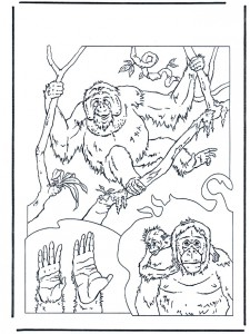 coloring page Monkeys (1)