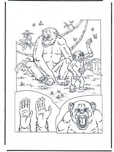 coloring page Monkeys (3)