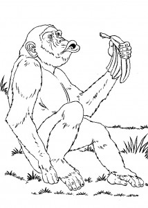 coloring page Monkeys (4)