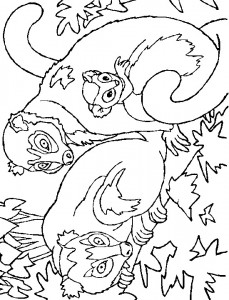 coloring page Monkeys (8)