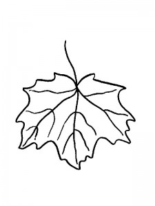 coloring page Leaves (18)