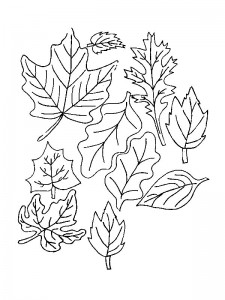 coloring page Leaves (19)