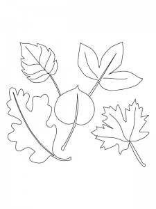 coloring page Leaves (24)