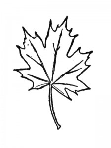 coloring page Leaves (25)