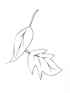 coloring page Leaves (26)