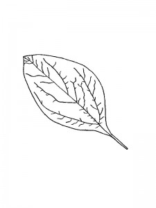 coloring page Leaves (3)