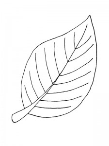 coloring page Leaves (35)