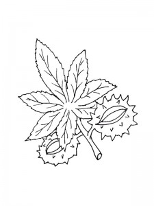coloring page Leaves (5)