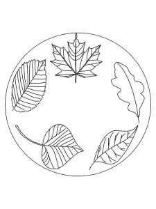 coloring page Leaves (7)