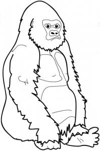 kleurplaat Bokito, de Gorilla (1)