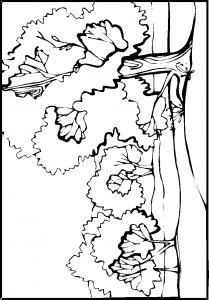målarbok Skog
