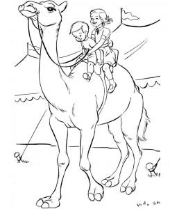 målarbok Cirkus (2)