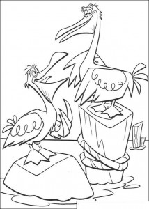 coloring page The pelicans