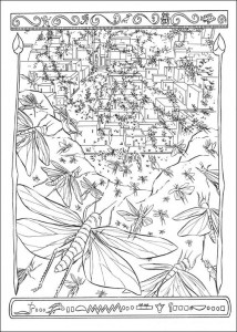 coloring page The locust plague