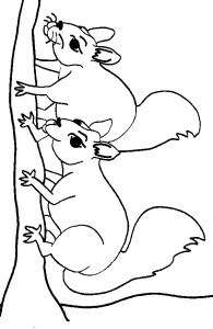 coloring page Squirrel (10)