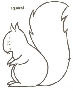 coloring page Squirrel (8)