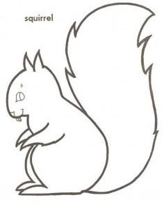 kleurplaat Eekhoorn (8)