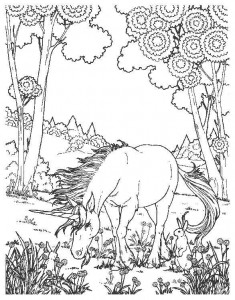 coloring page Unicorn (12)