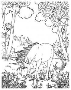 kleurplaat Eenhoorn (12)