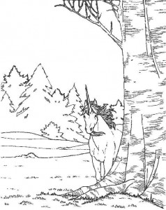 coloring page Unicorn (15)