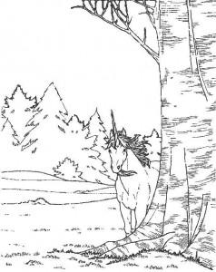 kleurplaat Eenhoorn (15)