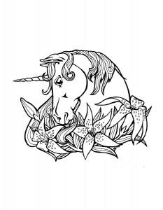 kleurplaat Eenhoorn (30)