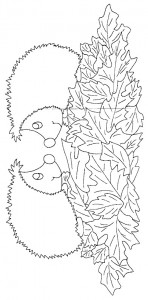 coloring page Hedgehogs (13)