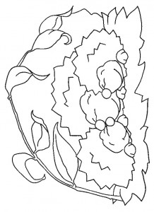 coloring page Hedgehogs (15)