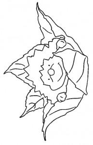 kleurplaat Egels (17)