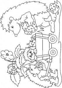 coloring page Hedgehogs (18)