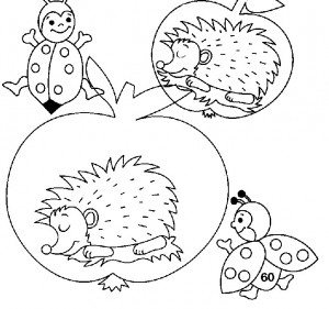 coloring page Hedgehogs (2)