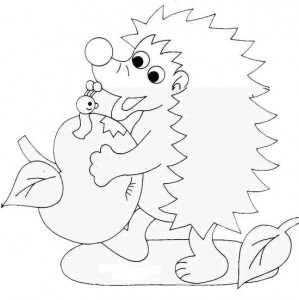 coloring page Hedgehogs (26)