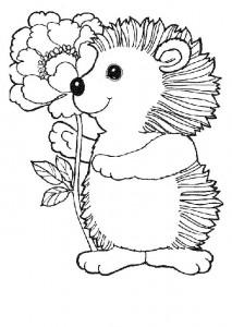 målarbok Hedgehogs (31)