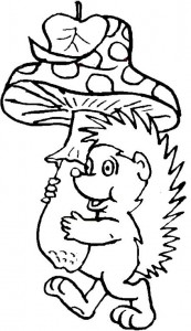 coloring page Hedgehogs (4)