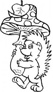målarbok Hedgehogs (4)