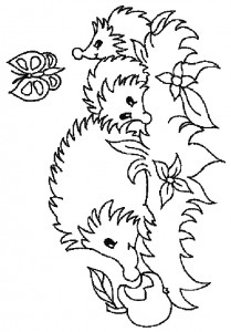 coloring page Hedgehogs (7)