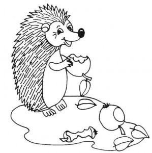 målarbok Hedgehogs