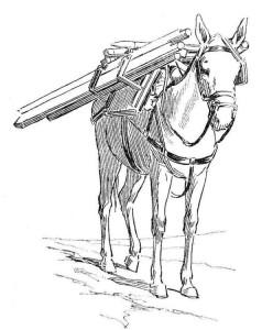 målarbok Esel