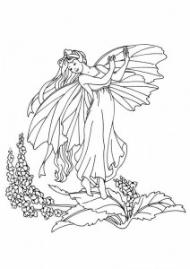 coloring page Fairies (17)