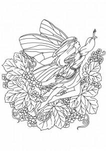 målarbok Fairies (3)