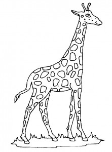 coloring page Giraffe (18)