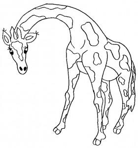 kleurplaat Giraffe (19)