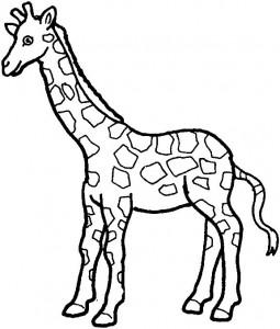kleurplaat Giraffe (29)